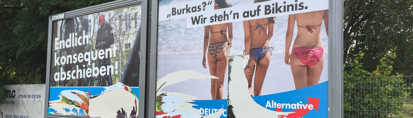 AfD-Wahlplakate